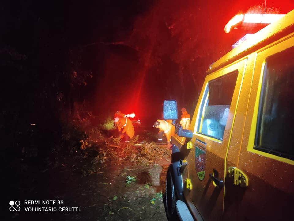 Defesa Civil e Força Voluntária auxiliam na desobstrução de estrada